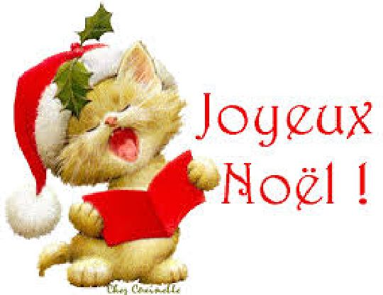 bon noël à tous , Joyeux Noël à vous et à  votre famille, que cette douce nuit de Noël  vous procurent les plus beaux des  sensations : le bonheur d'être en famille, de  l'amour et de la tendresse.